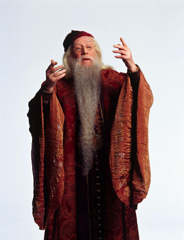Portrait of Albus Dumbledore