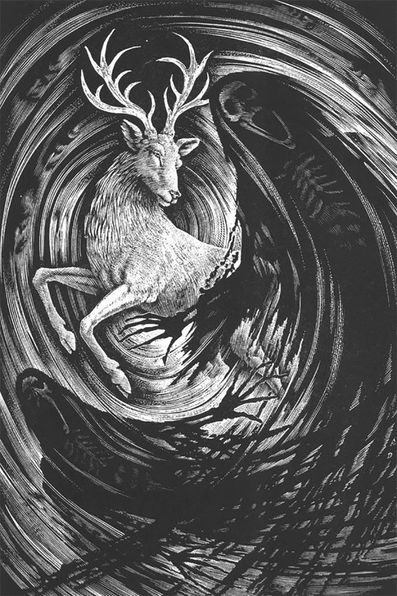 Andrew Davidson's 'Order of the Phoenix' wood engraving