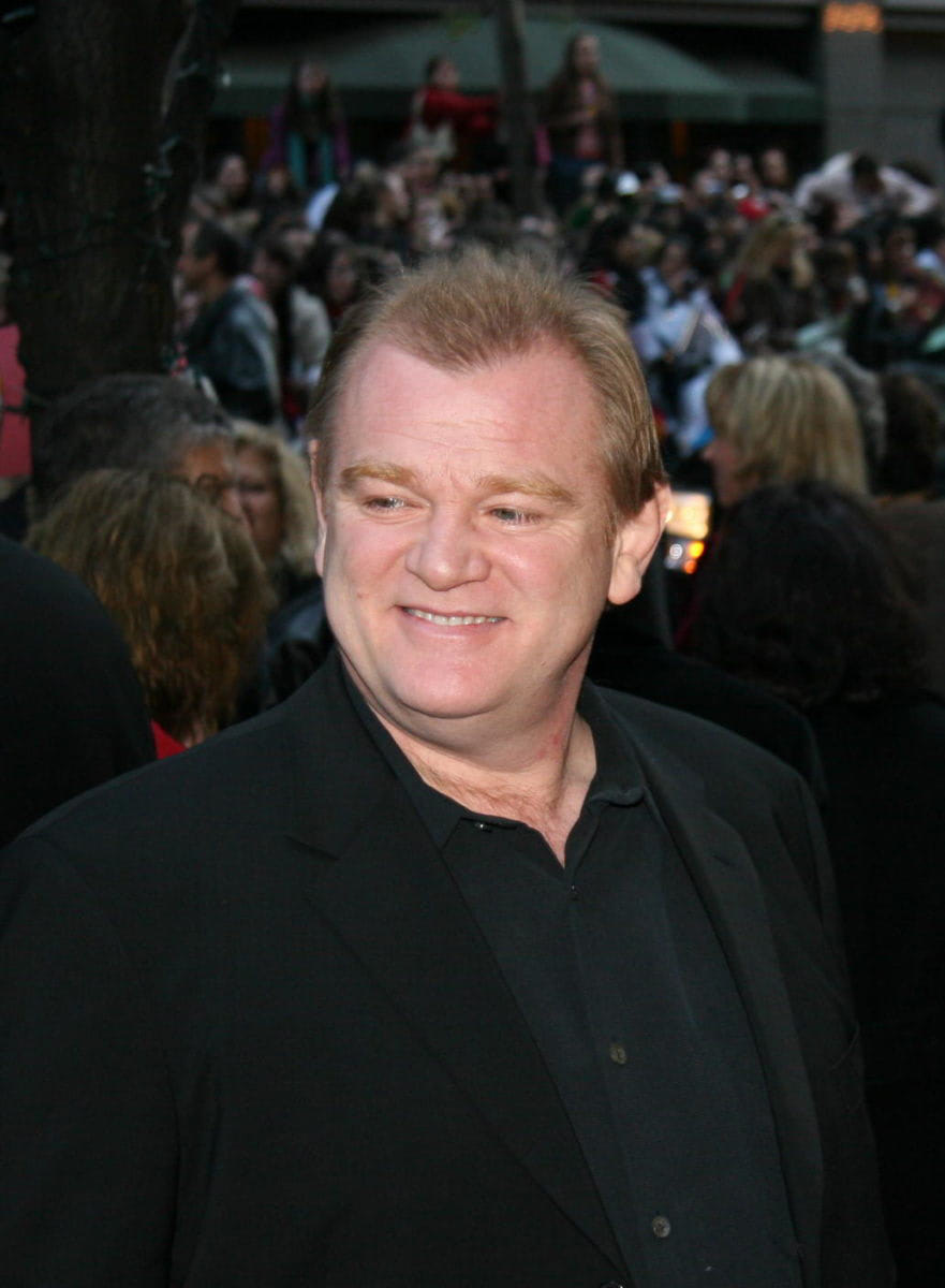Brendan Gleeson at the New York City 'Goblet of Fire' premiere