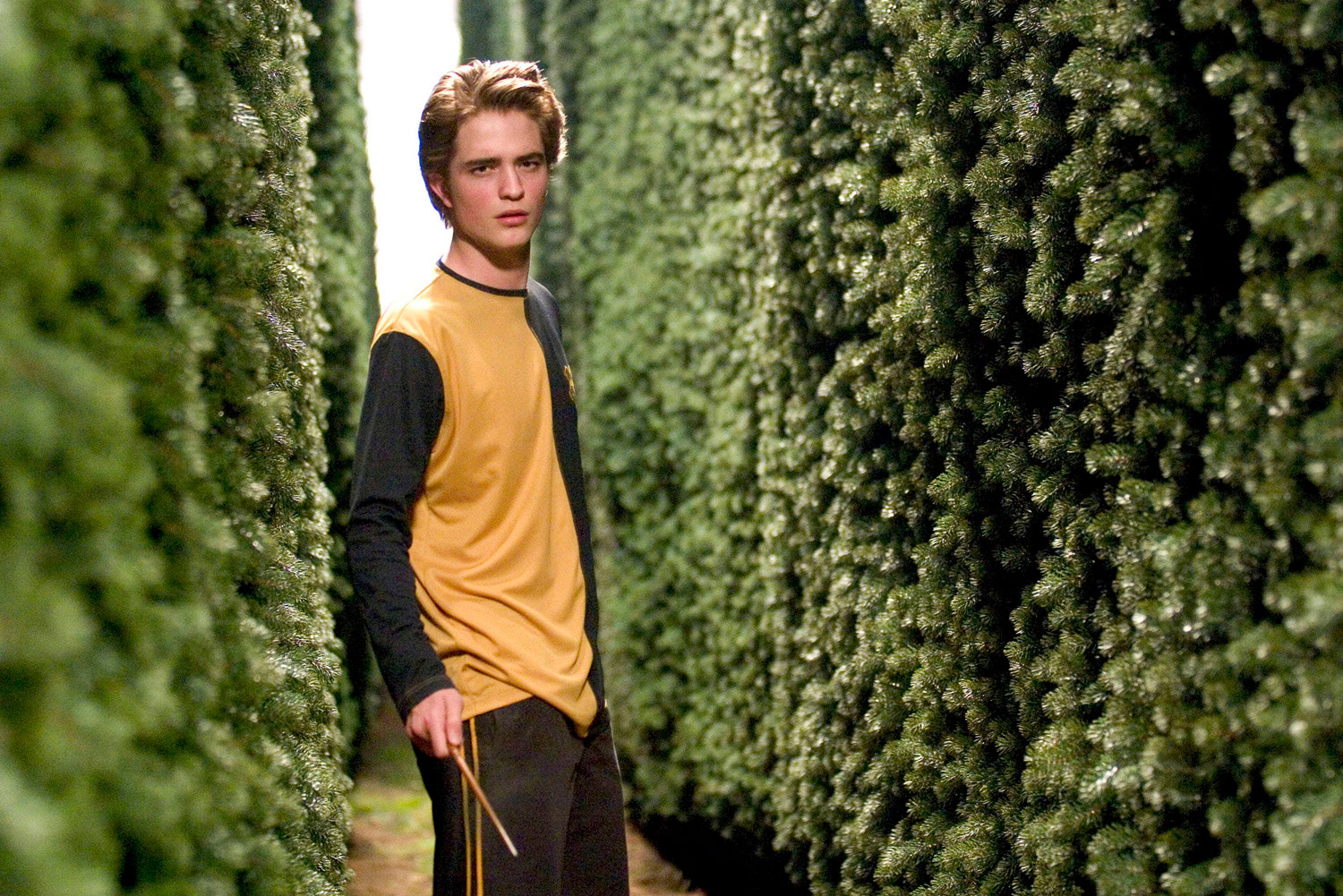 Cedric Diggory in the maze