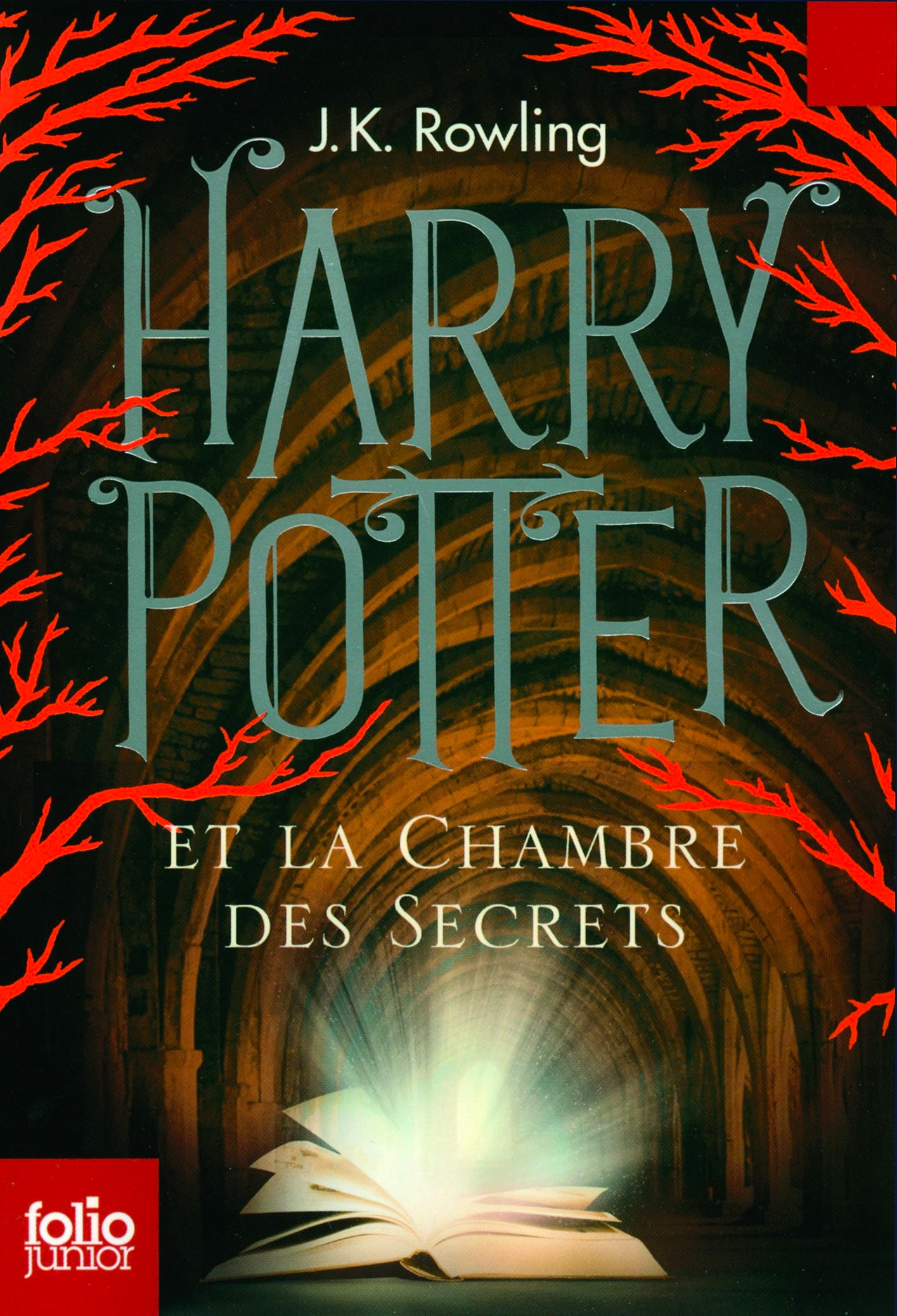 'Chamber of Secrets' French adult edition