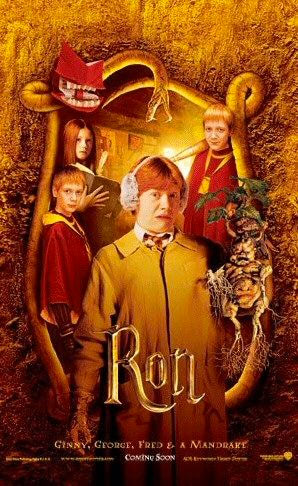 'Chamber of Secrets' Ron poster #2