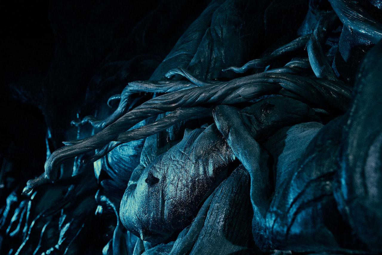 Devil's Snare (Hagrid's Magical Creatures Motorbike Adventure)