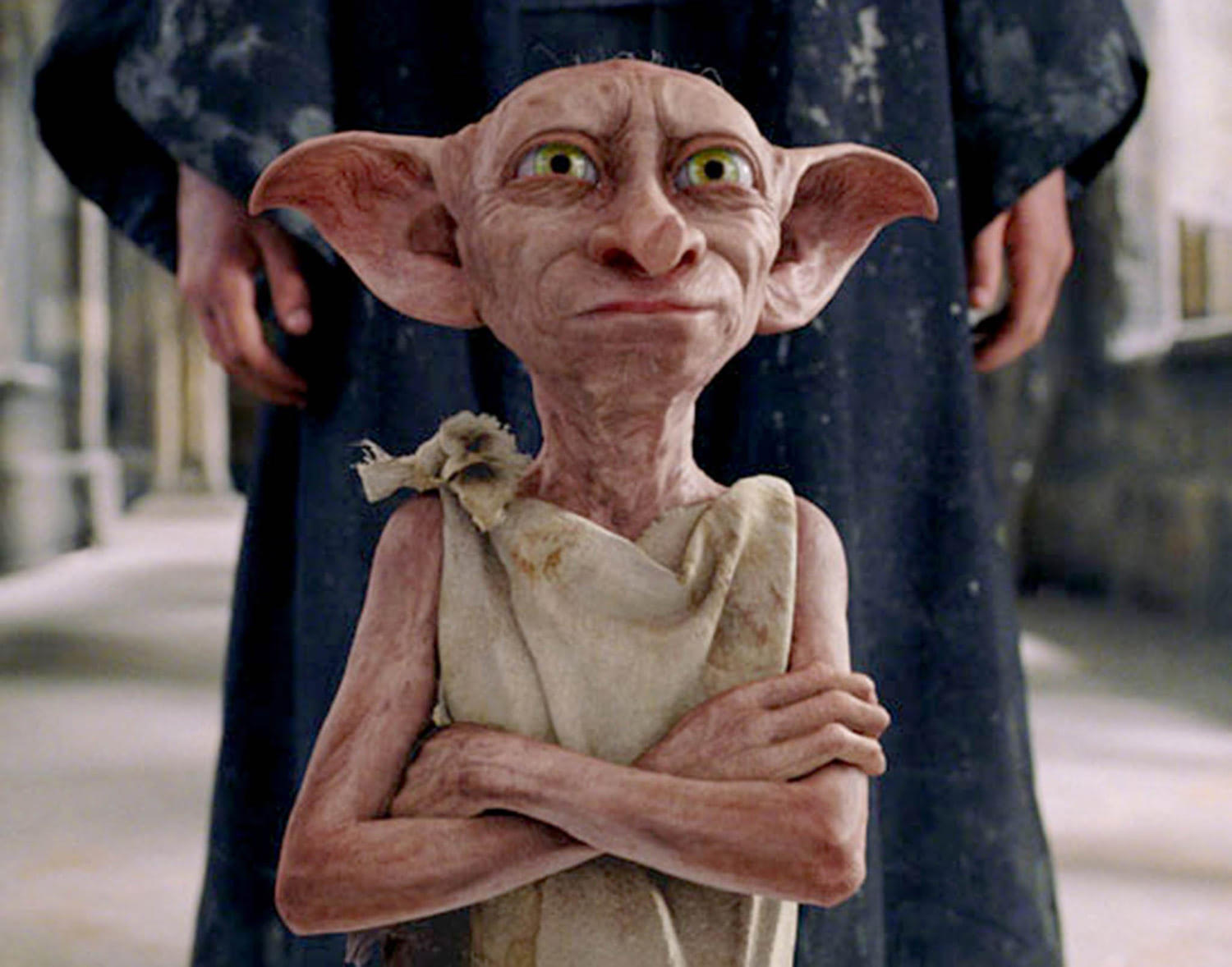 Dobby protects Harry