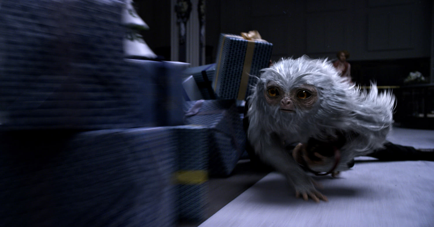 Dougal the Demiguise