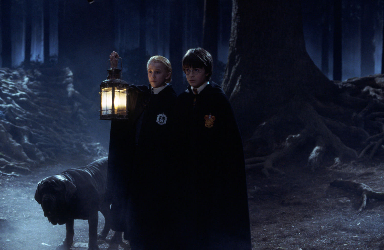 Draco and Harry in the Forbidden Forest