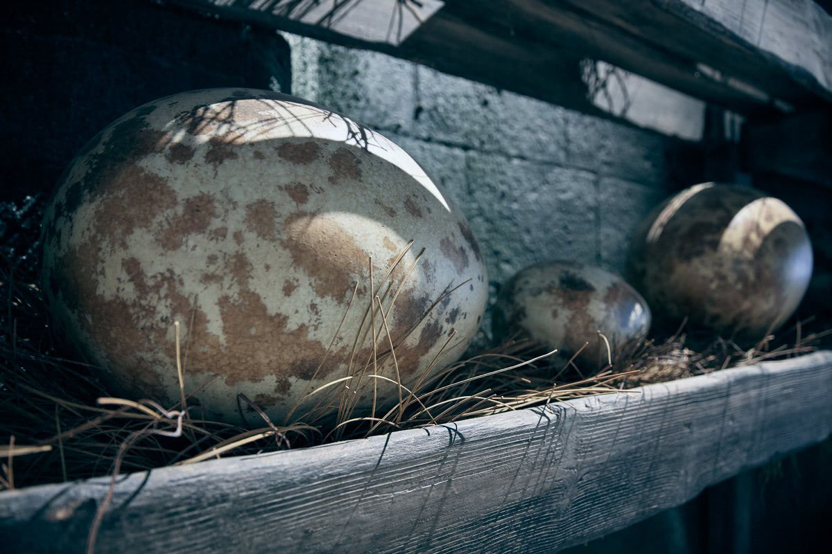 Dragon eggs (Hagrid's Magical Creatures Motorbike Adventure)