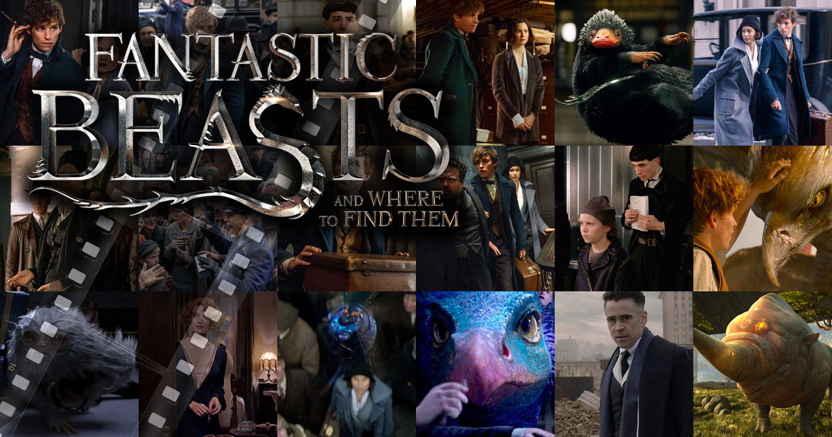 'Fantastic Beasts and Where to Find Them' movie stills