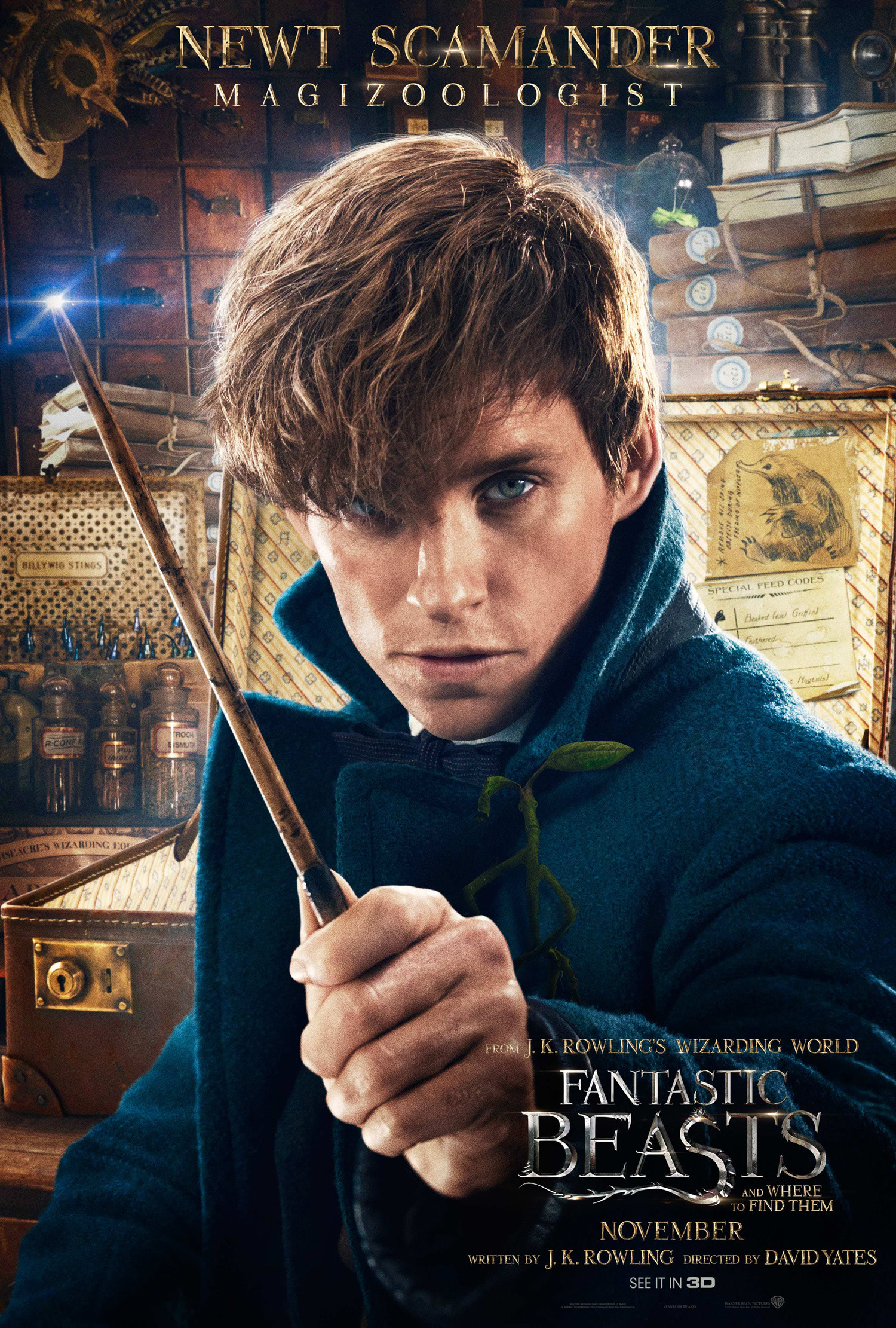 'Fantastic Beasts and Where to Find Them' Newt poster