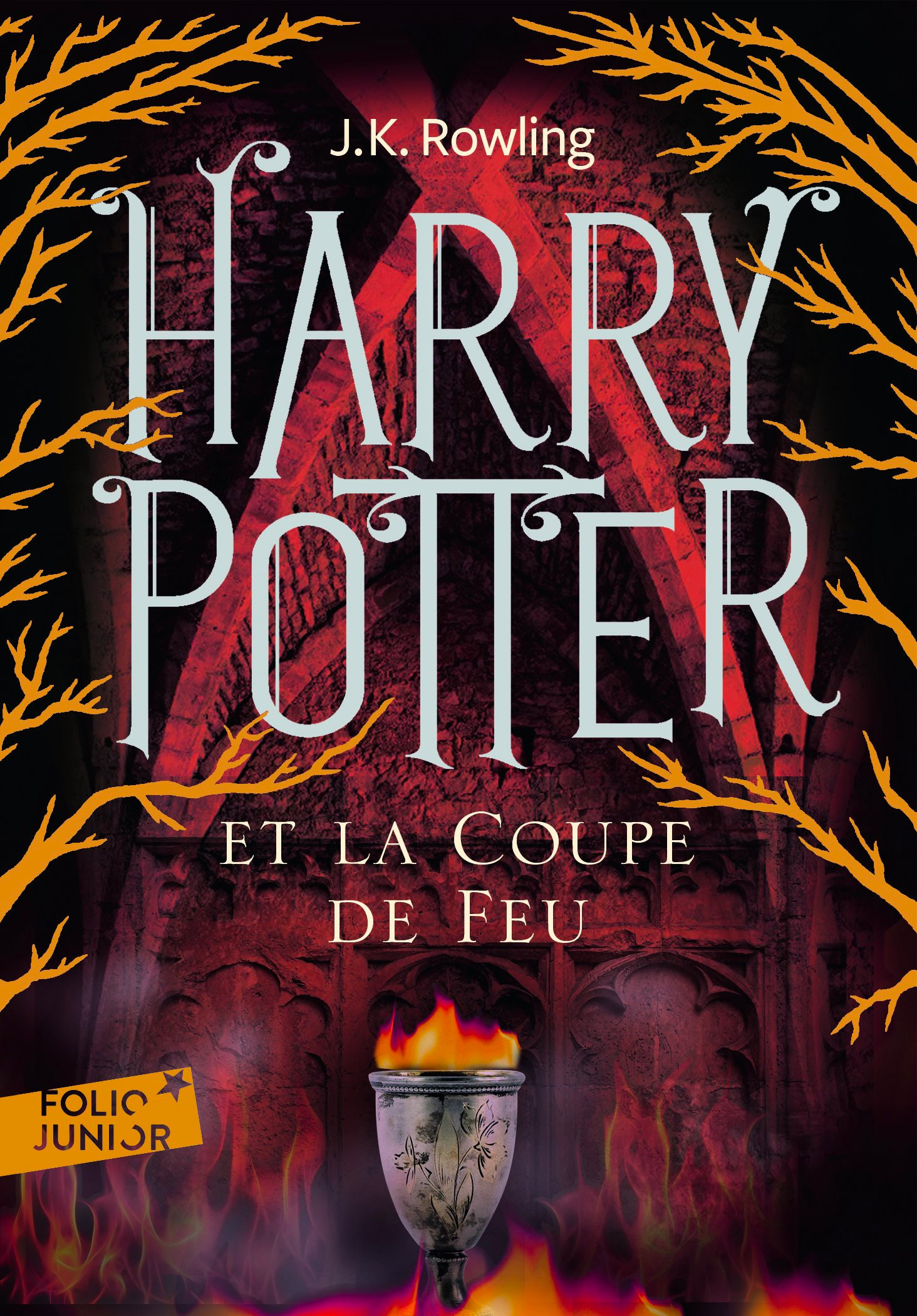 'Goblet of Fire' French adult edition