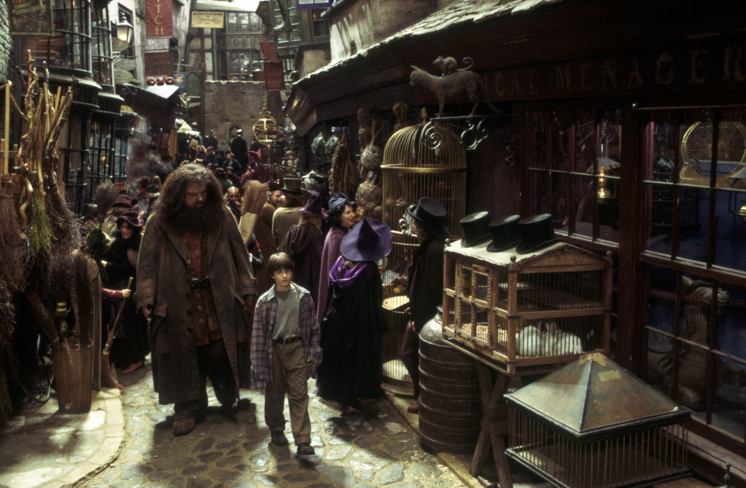 Hagrid and Harry in Diagon Alley
