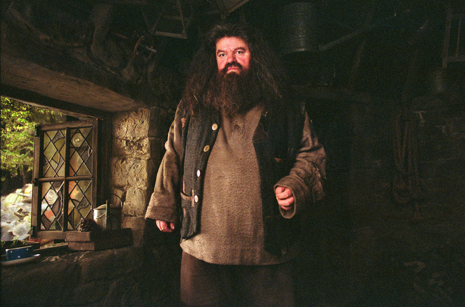 Hagrid in his cabin