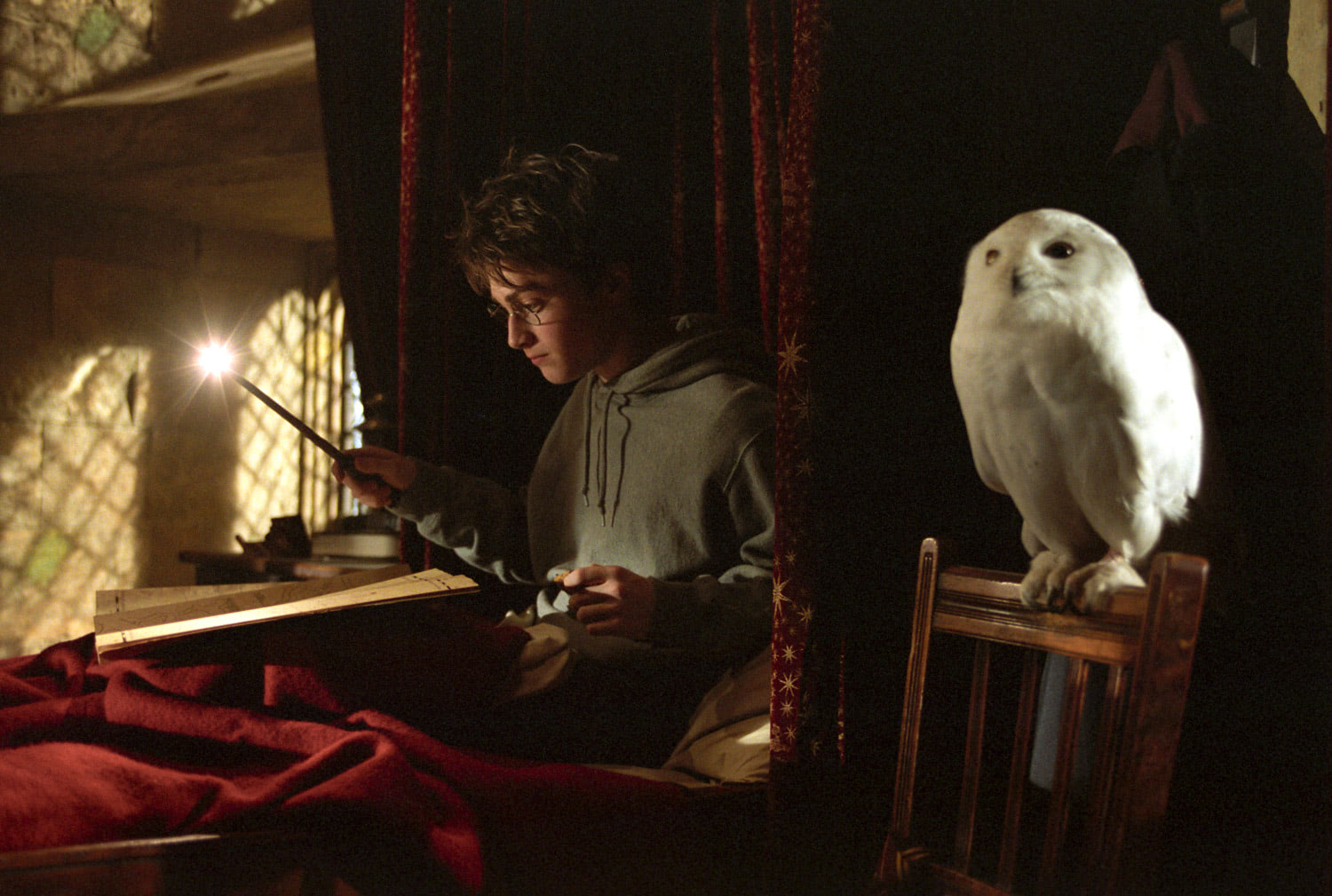 Harry and Hedwig in bed