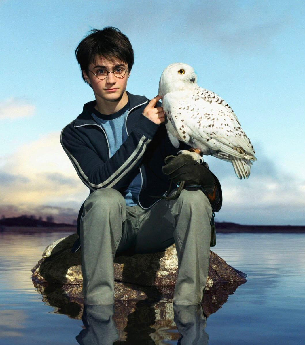 Portrait of Harry and Hedwig