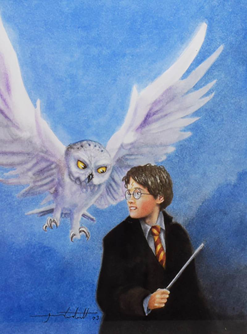 Harry and Hedwig (Jason Cockroft illustration)