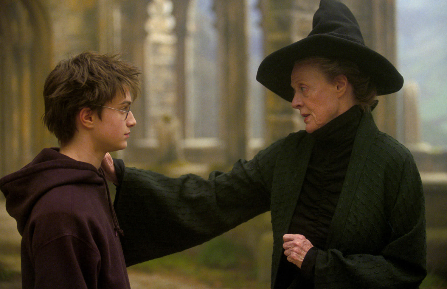 Harry and Professor McGonagall
