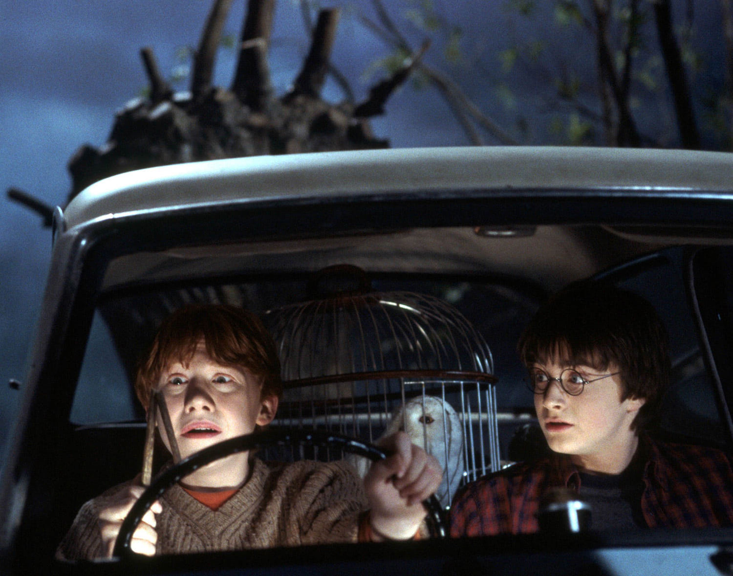 Harry and Ron crash into the Whomping Willow