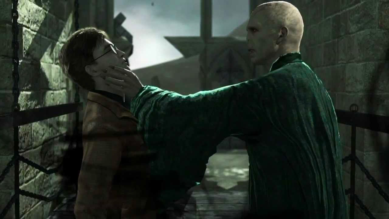 Harry and Voldemort (Deathly Hallows: Part 2 video game)