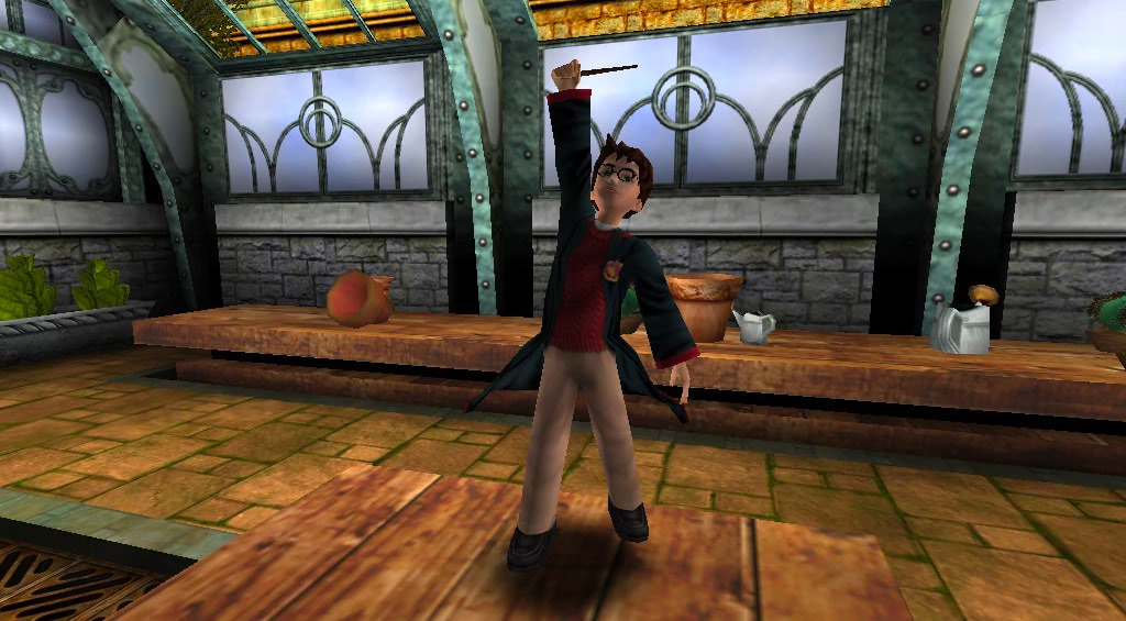 Harry (Chamber of Secrets video game)