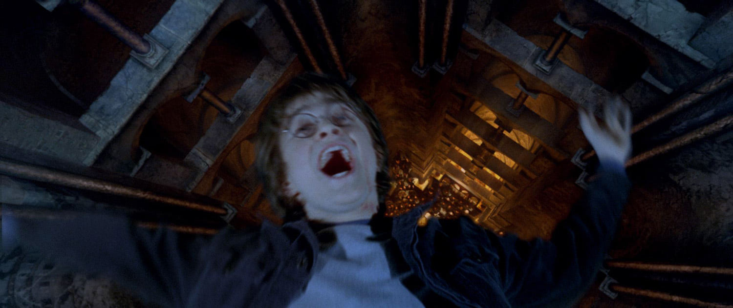 Harry falls into the Pensieve
