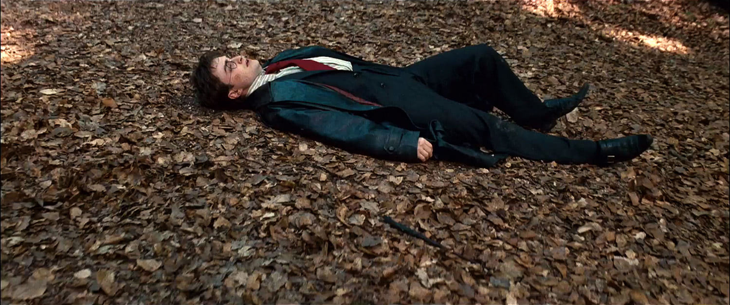 Harry on the forest floor