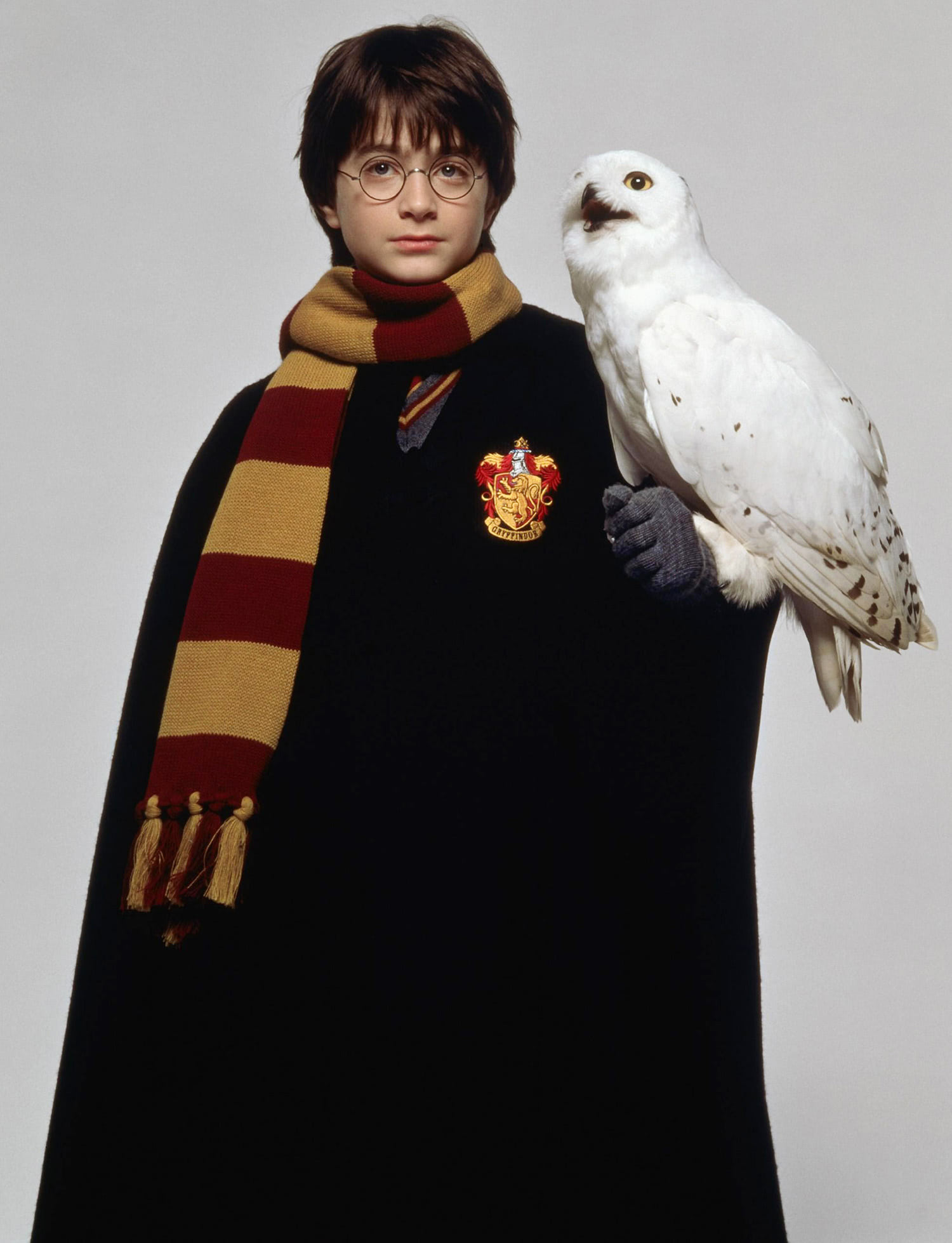 Portrait of Harry Potter with Hedwig