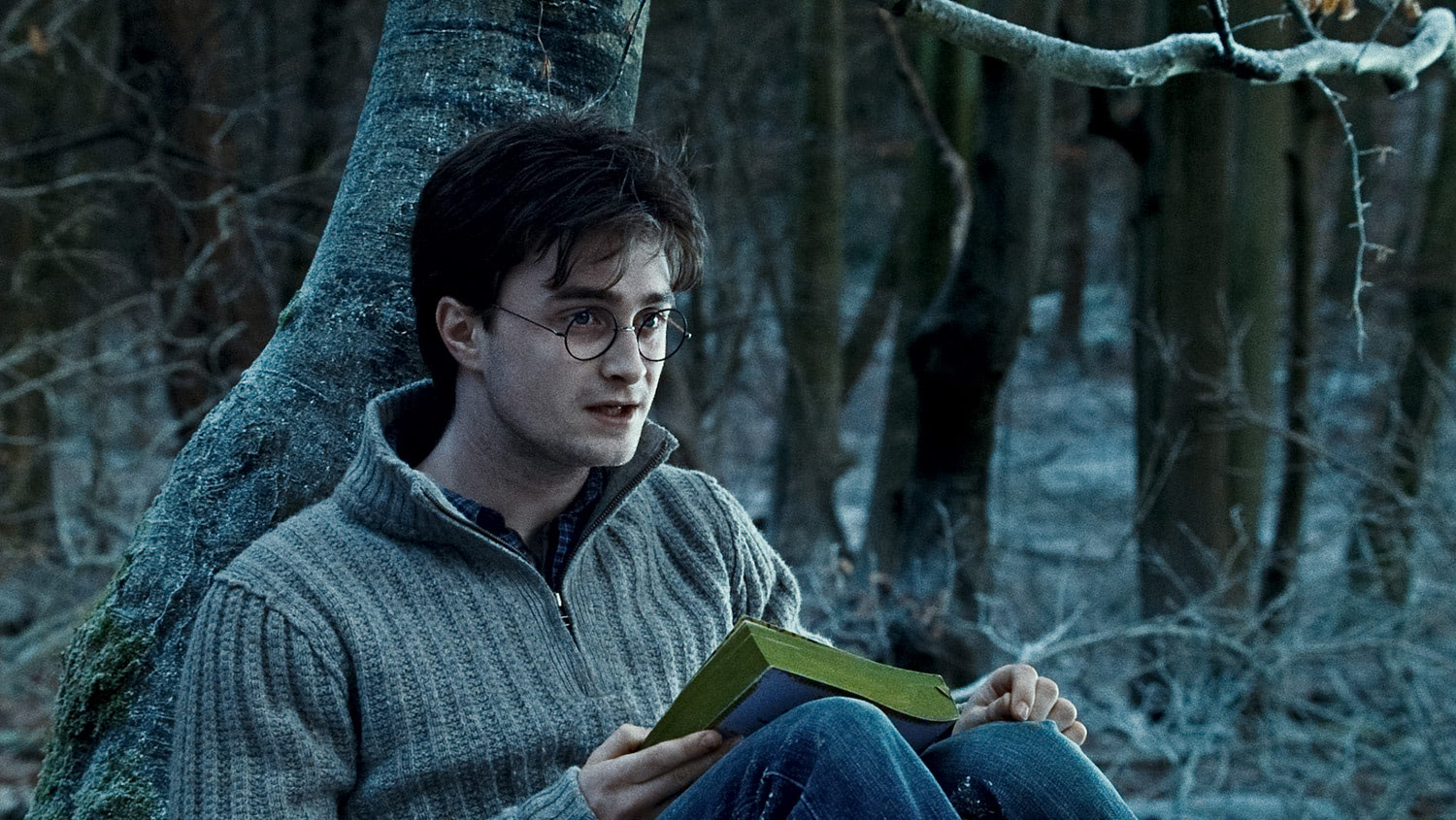 Harry reads Dumbledore's biography