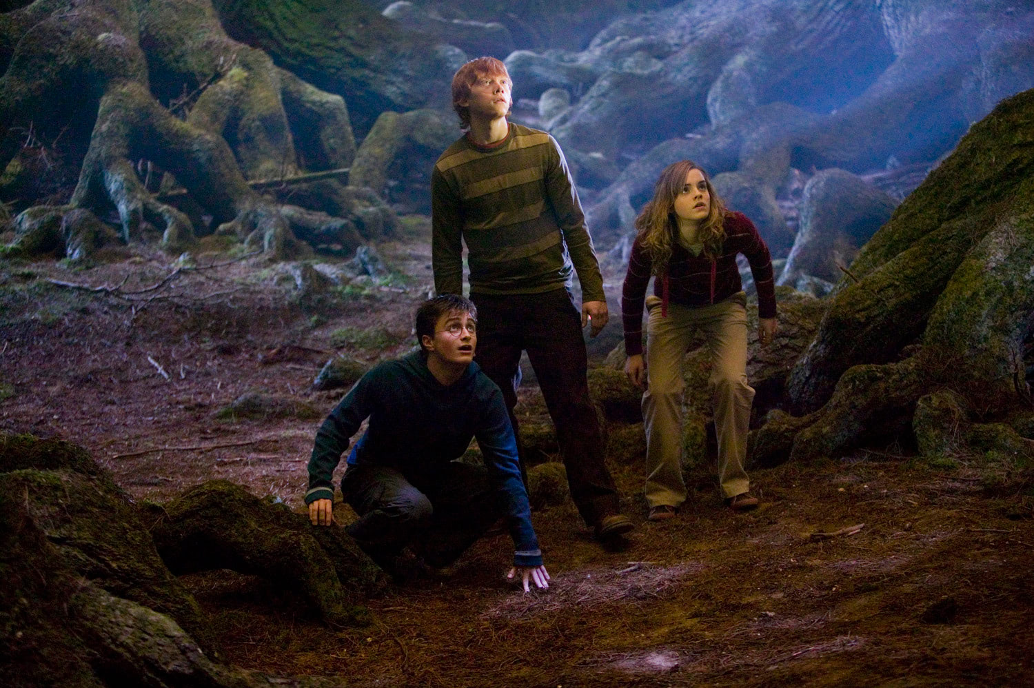 Harry, Ron and Hermione in the Forbidden Forest