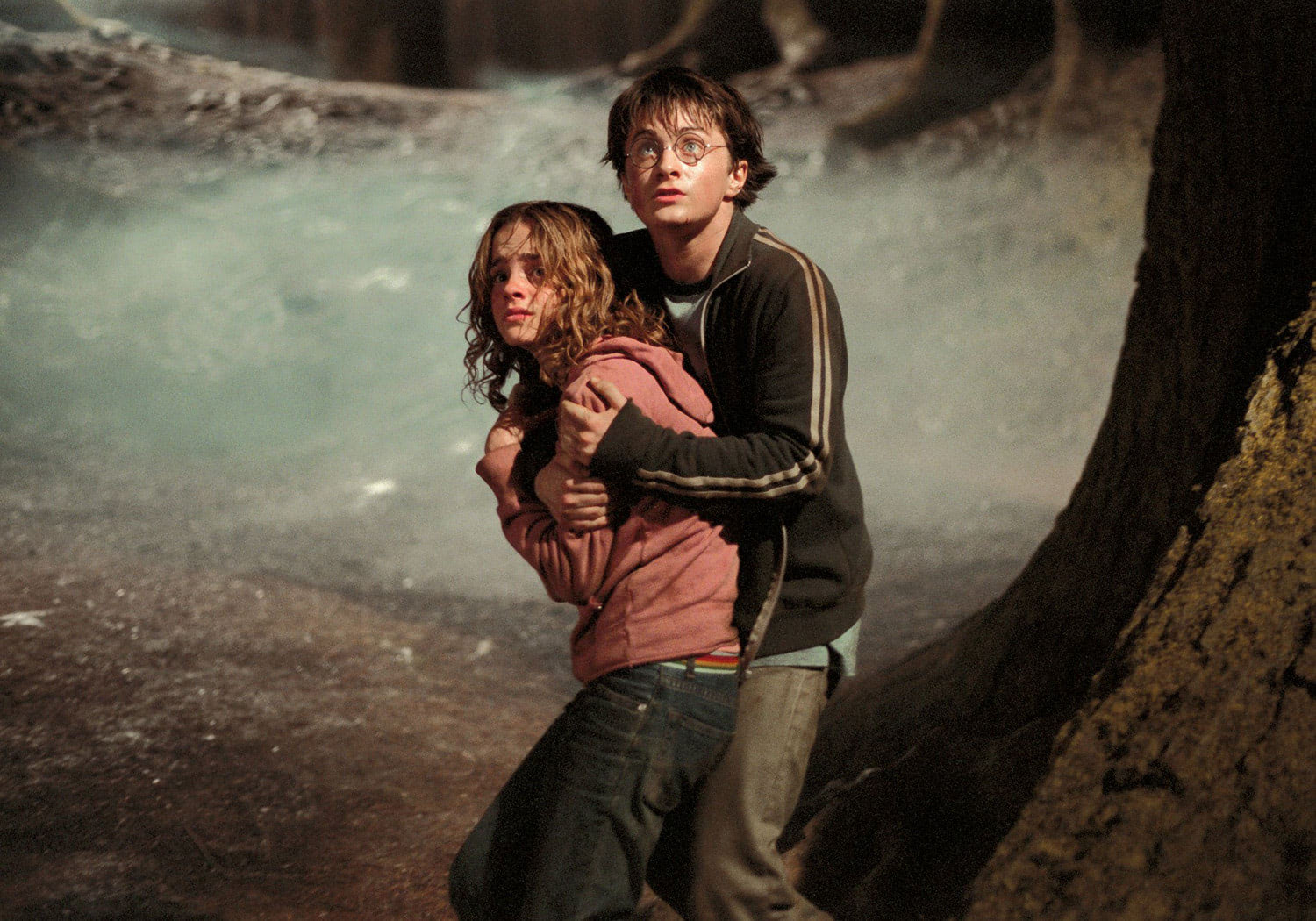 Harry shields Hermione