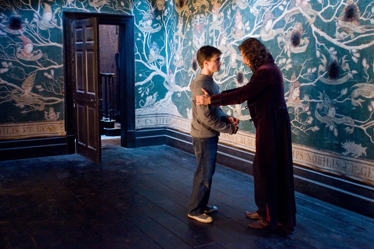 Harry and Sirius at Grimmauld Place