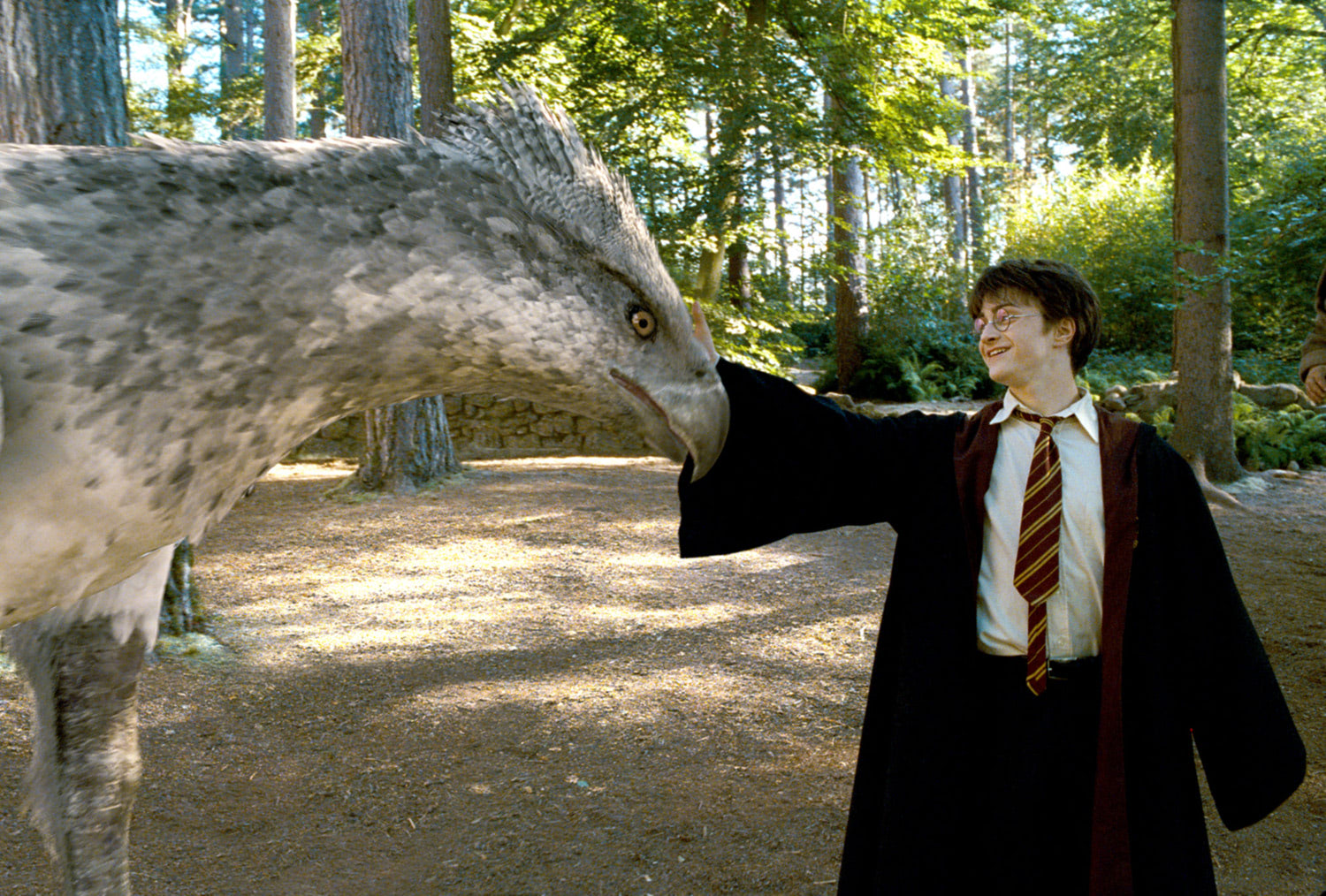 Harry touches Buckbeak