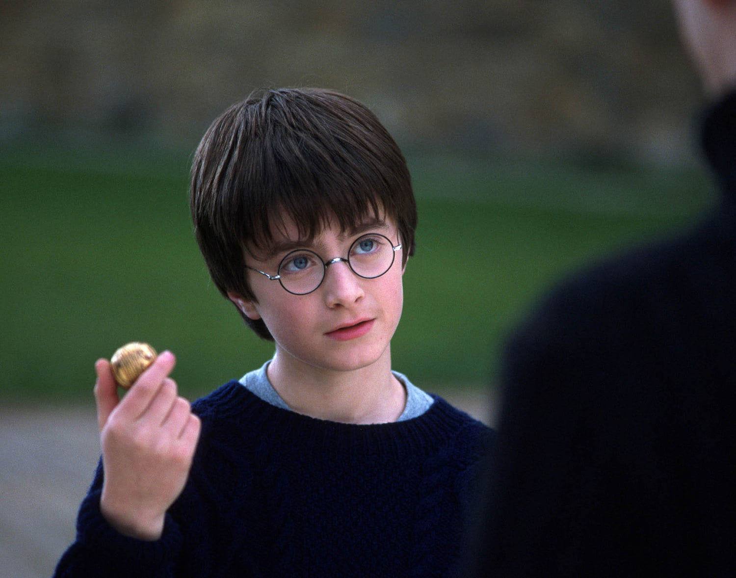 Harry with the Golden Snitch