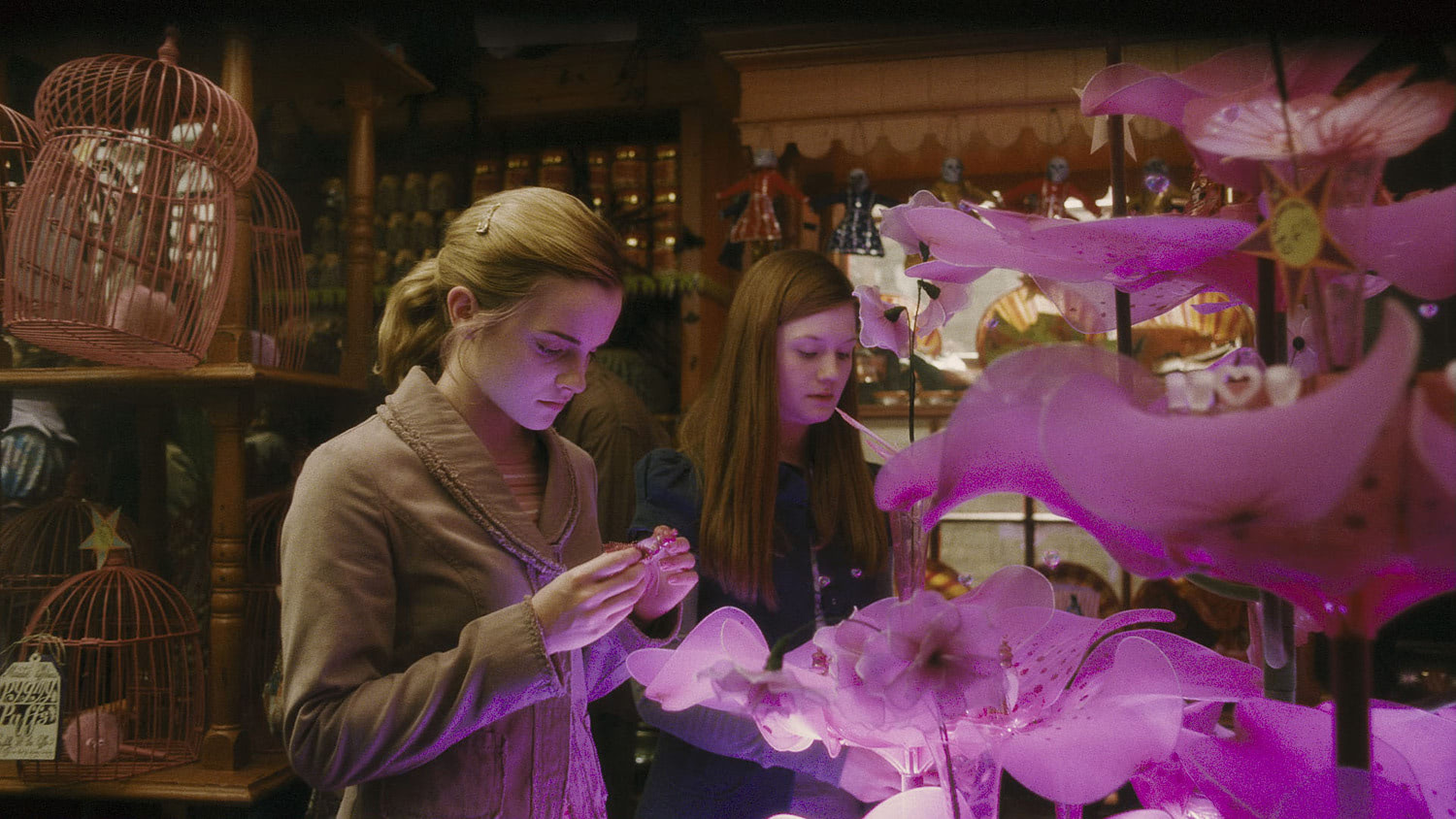 Hermione and Ginny at Weasley's Wizard Wheezes