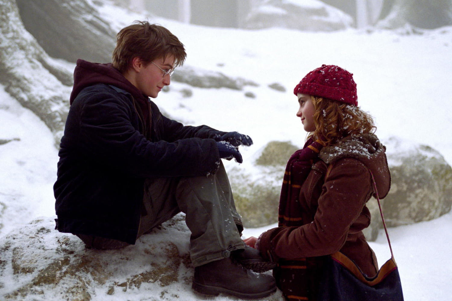 Hermione and Harry talk in the snow