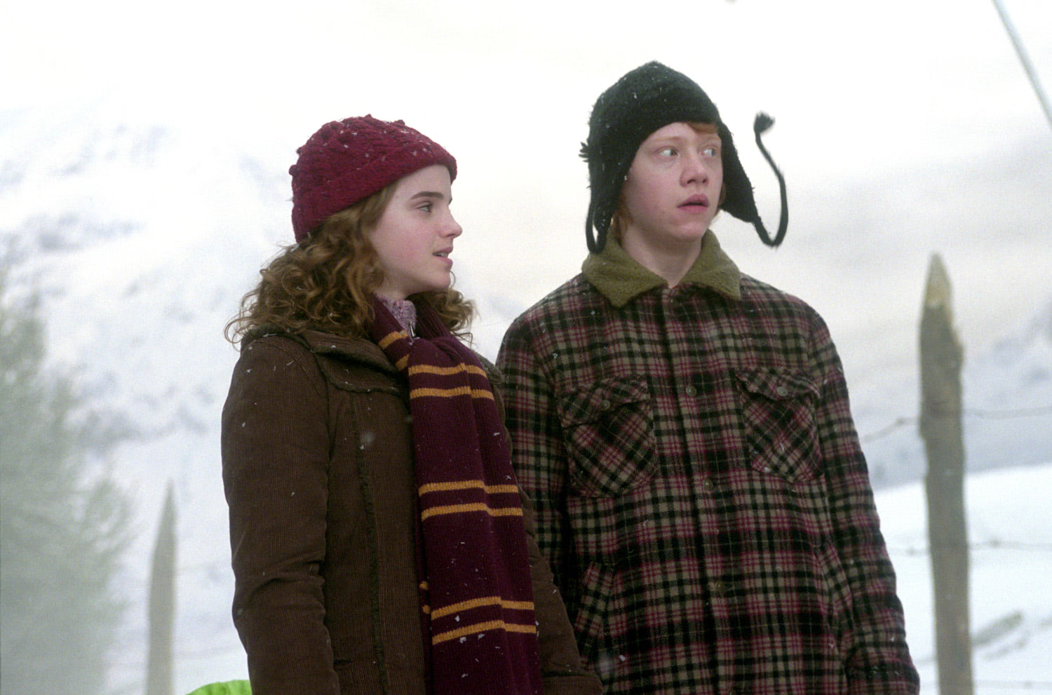 Hermione and Ron in Hogsmeade
