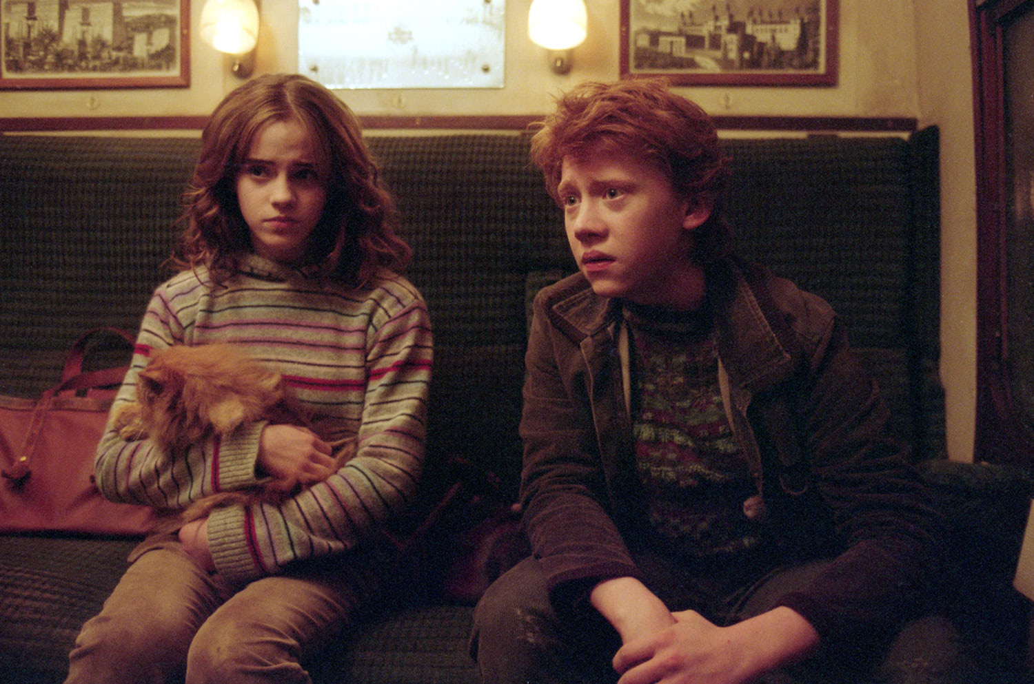 Hermione and Ron on the Hogwarts Express