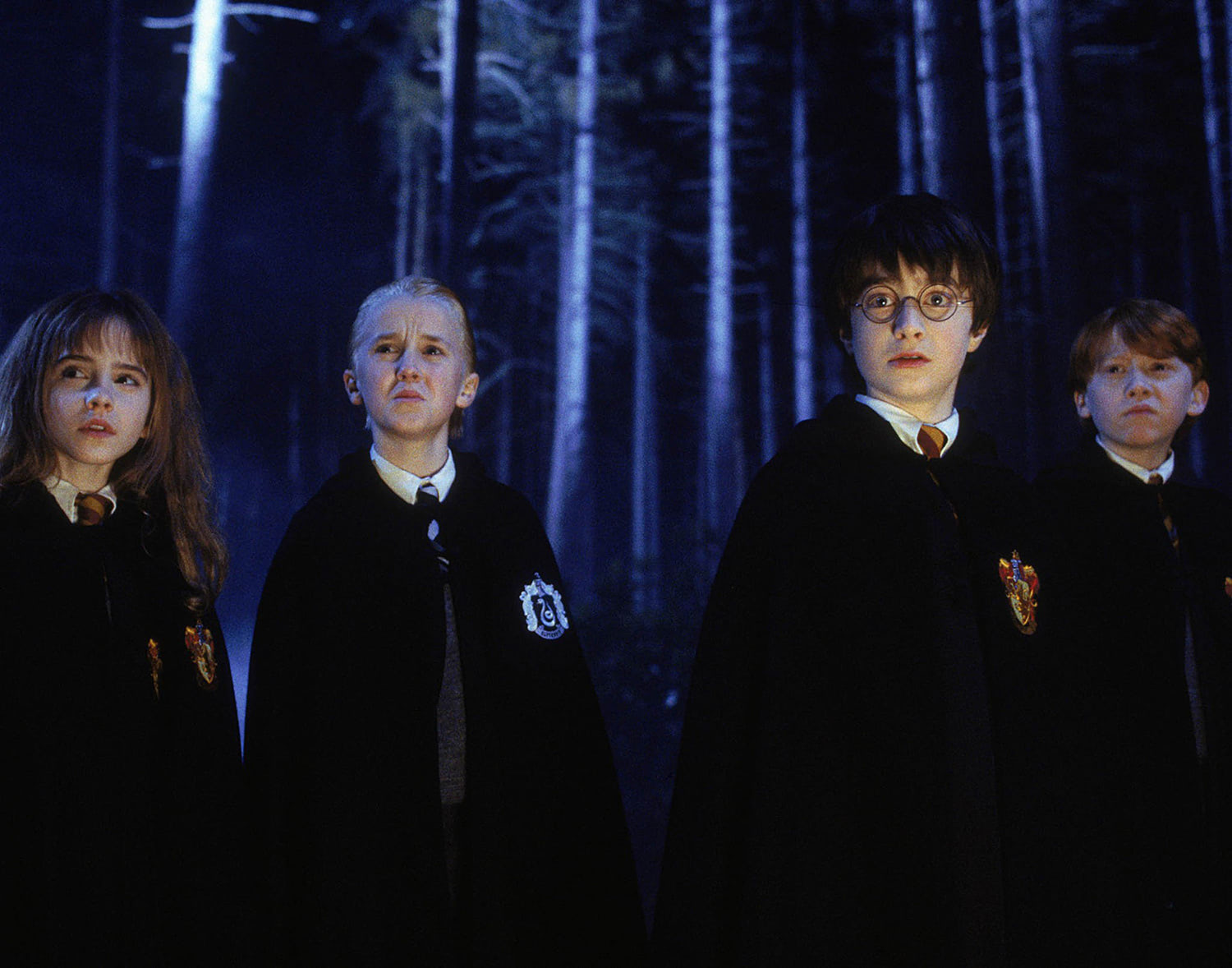 Hermione, Draco, Harry and Ron in the Forbidden Forest