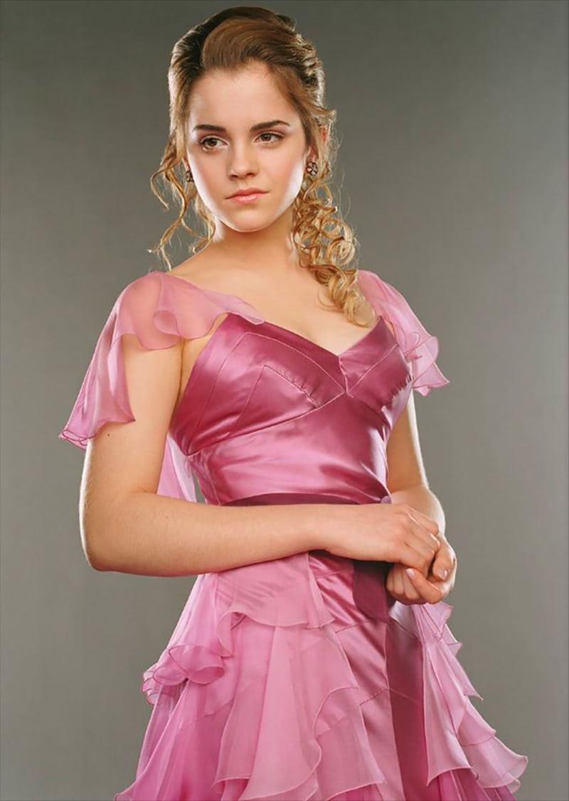 Hermione Granger Yule Ball portrait