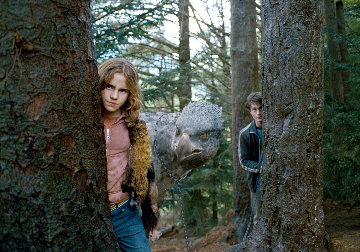 Hermione, Harry and Buckbeak
