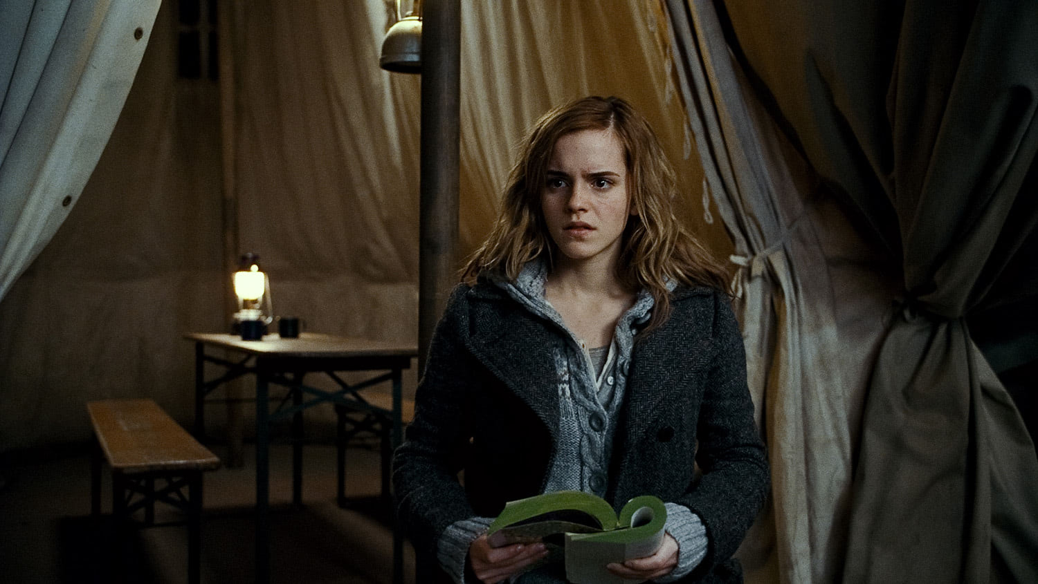 Hermione reads Dumbledore's biography