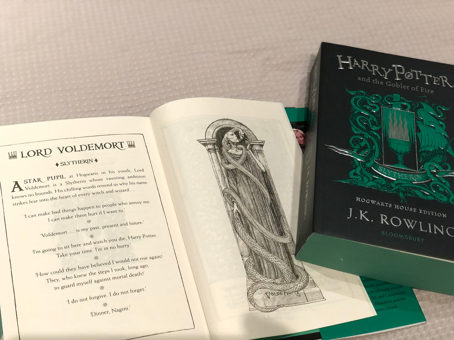 Lord Voldemort portrait ('Goblet of Fire' house edition)