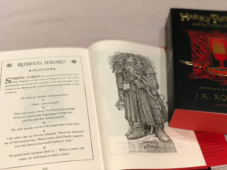 Rubeus Hagrid portrait ('Goblet of Fire' house edition)