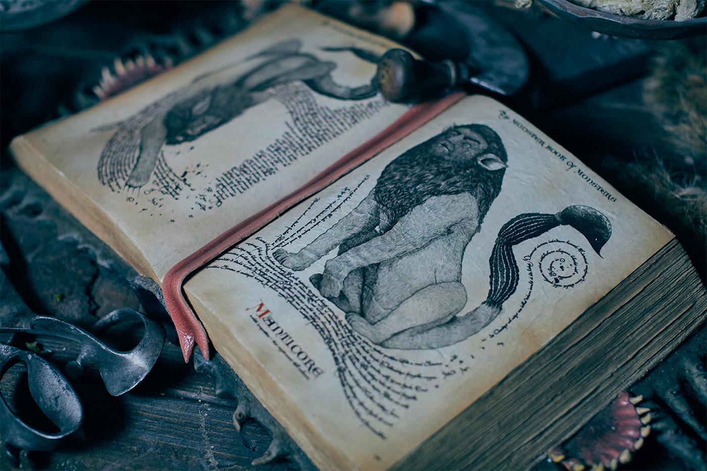 Manticore book (Hagrid's Magical Creatures Motorbike Adventure)