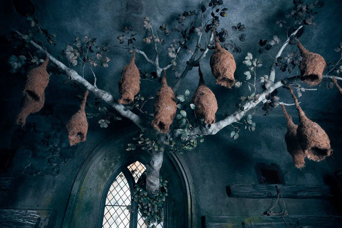 Nests (Hagrid's Magical Creatures Motorbike Adventure)
