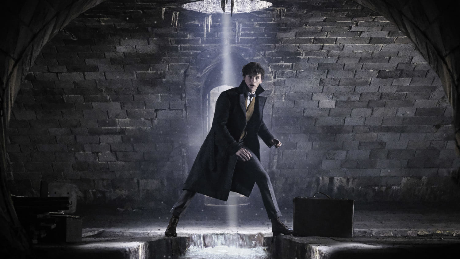 Newt Scamander in the sewers