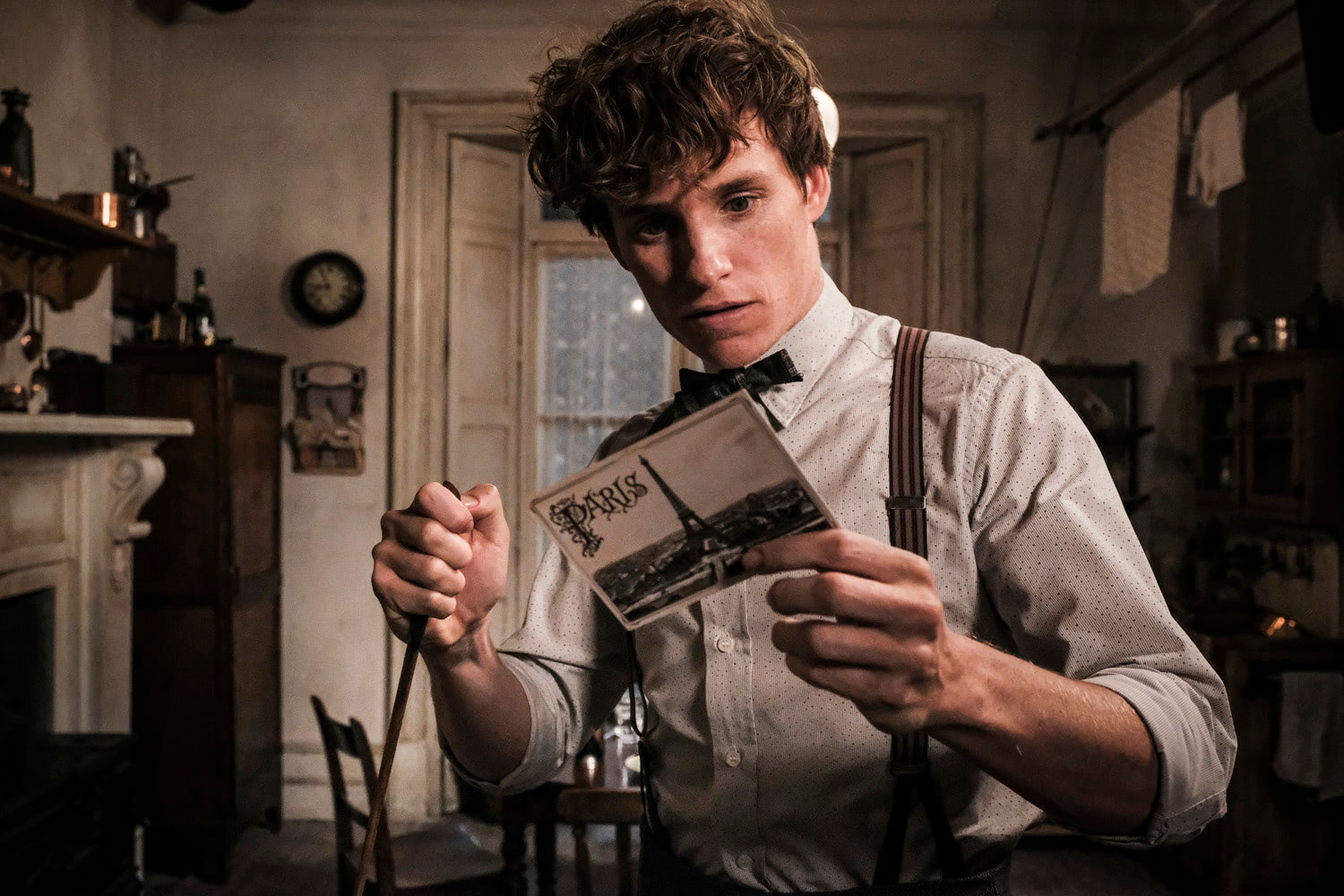 Newt with the Paris postcard