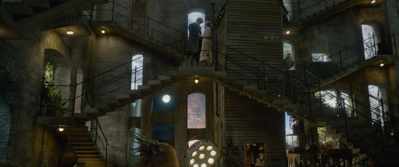 Newt's magical basement