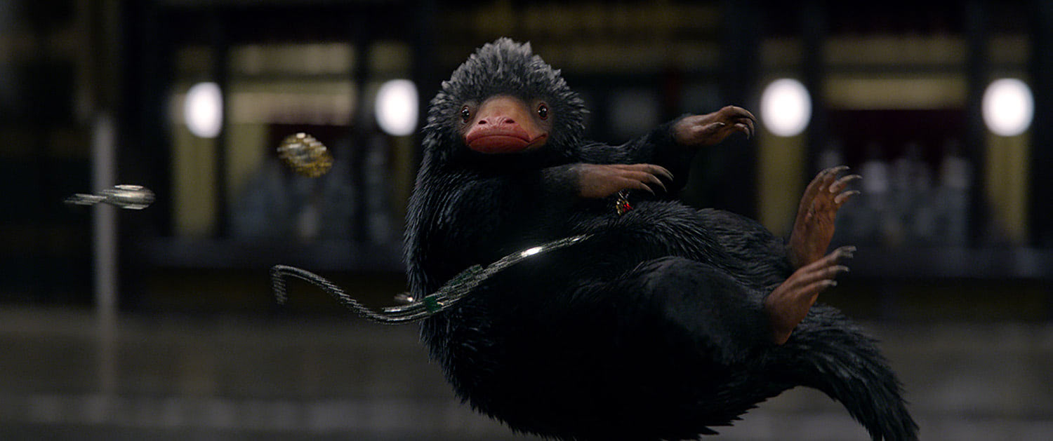 Niffler in flight