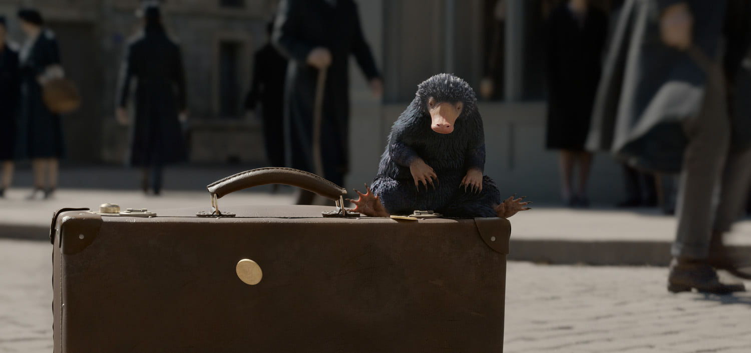 Niffler on a suitcase