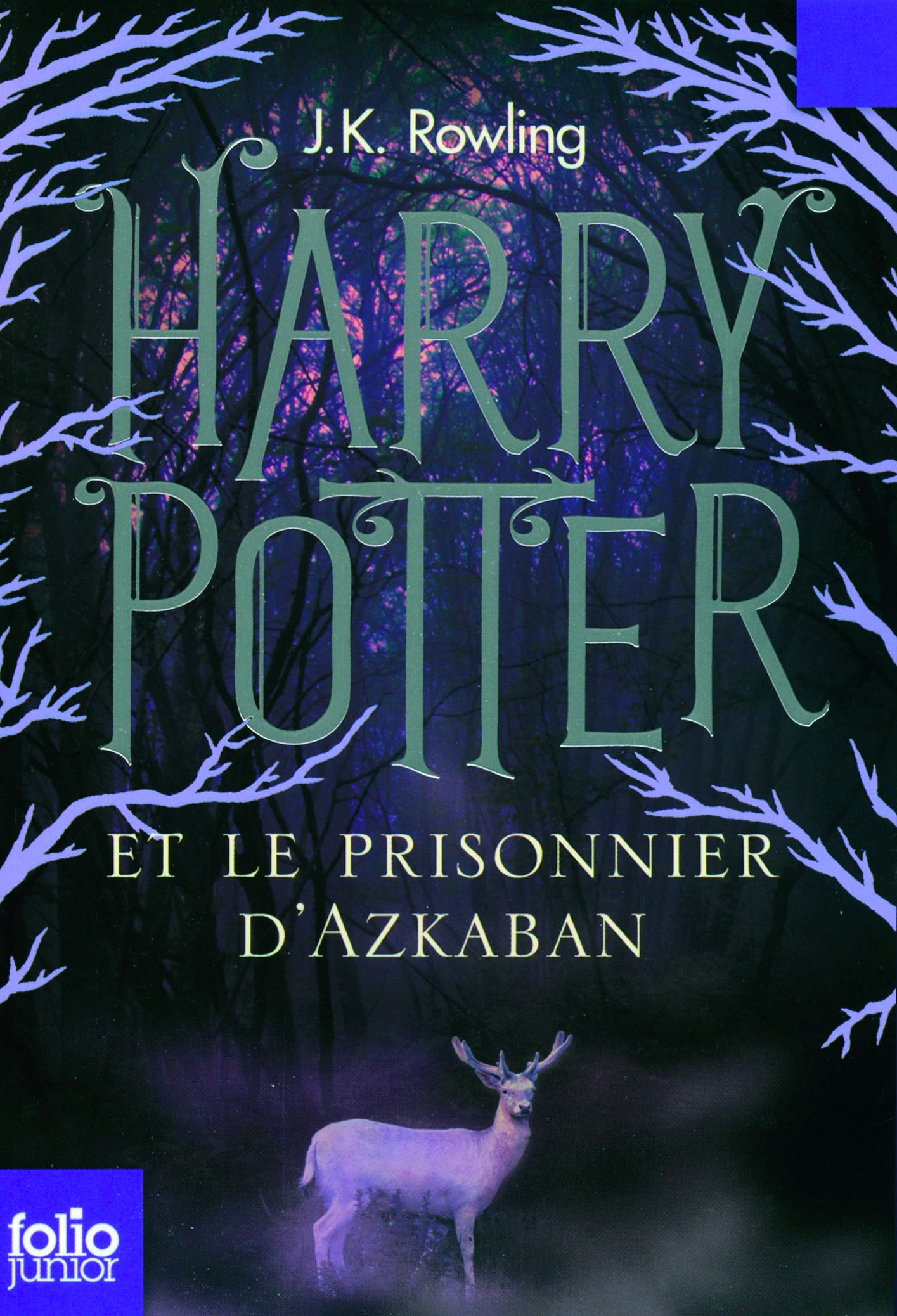 'Prisoner of Azkaban' French adult edition